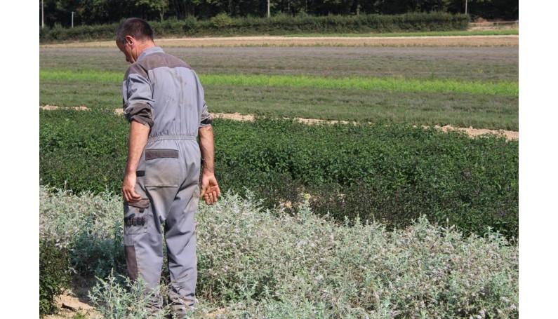 Notre partenaire ADATRIS producteur au service de l'intelligence végétale !