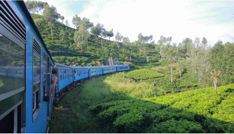 À la rencontre des femmes du thé au Sri Lanka