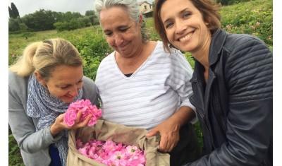 La magie des roses en Provence … tournage!