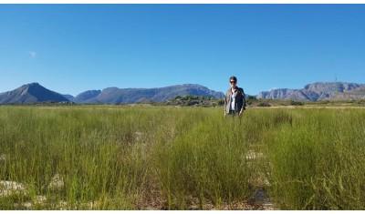 Filière Fair For Life pour le rooibos bio d'Afrique du Sud
